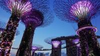 Garten bei der Bucht in Singapur