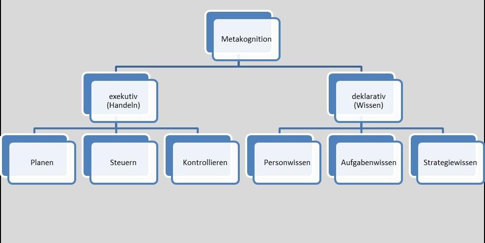 Hierarchiediagramm zur Metakognition