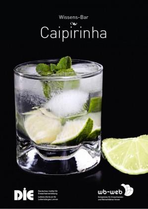 Cocktail Caipirinha, Präsentieren, Visualisieren und Dokumentieren