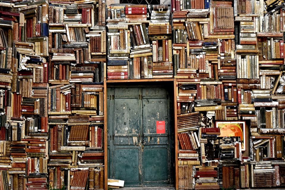 Das Bild zeigt eine Tür in einer Bücherwand.