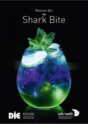 Cocktail Shark Bite, Gesetzliche Rahmenbedingungen zum Arbeitsverhältnis von Lehrenden in der Erwachsenenbildung