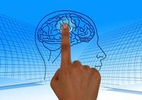 Ein Zeigefinger klickt auf einen Bereich in einem illustrierten Gehirn