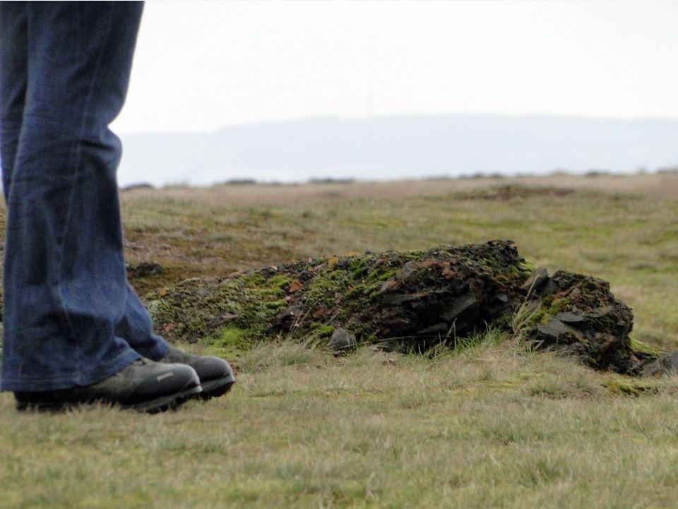 Das Bild zeigt die Beine eines Wanderers im Hochmoor.