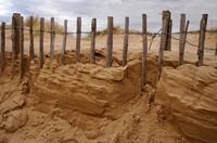 Holzzaun im Sand