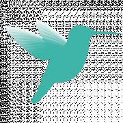 Das Bild zeigt die Silhouette eines fliegenden Vogels.
