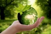 Das Bild zeigt eine Hand, die eine grüne Weltkugel vor verschwommenem Naturhintergrund hält.
