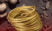 Das Bild zeigt einen Goldring und im Hintergrund Knochen und Schädel von Bronzekriegern.