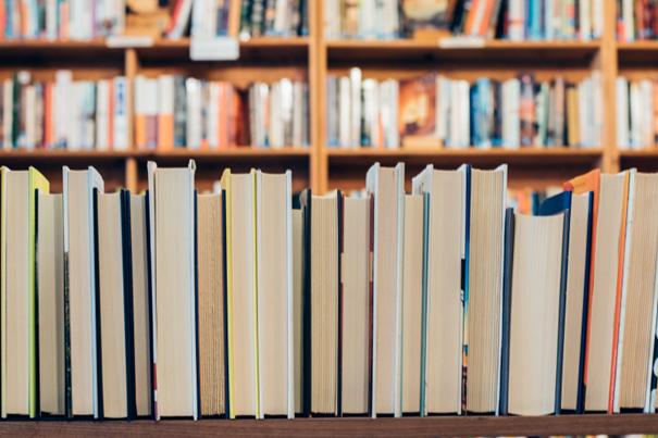 Das Bild zeigt eine Reihe Bücher.